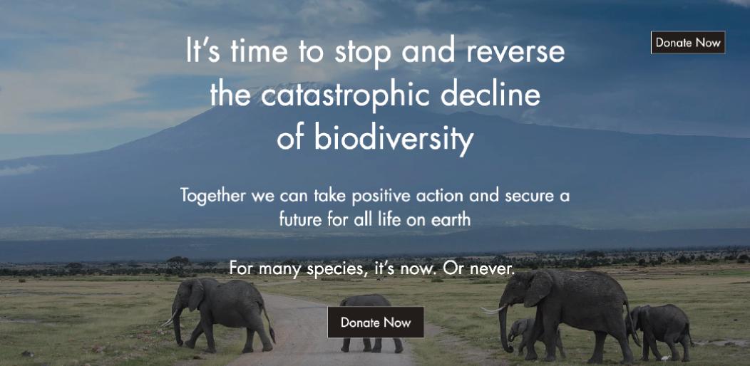 Katie Reddin Clancy British Voiceover Artist Biodiversity Image
