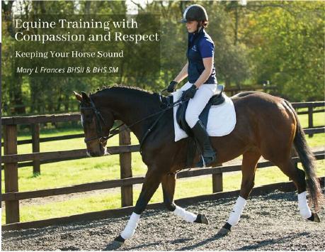 Katie Reddin Clancy British Voiceover Artist Equine Traning